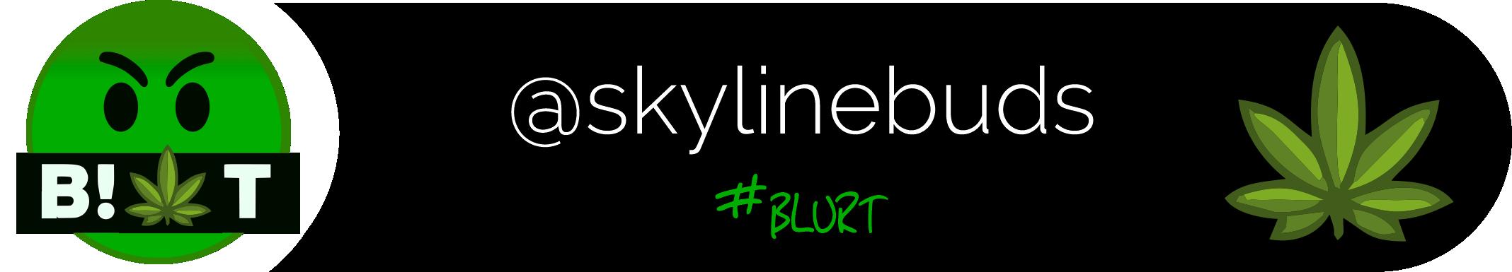 Blurt_skylinebuds_2.png